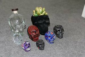 Mexican skull collection Elermore Vale Newcastle Area Preview