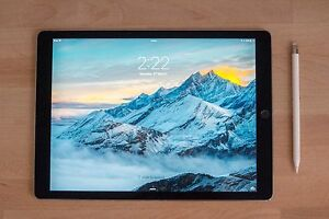 iPad Pro 12.9 inch + Apple Pencil + 2 Cases Winmalee Blue Mountains Preview