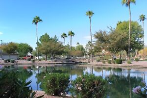 Beautiful condo in gated community in Mesa, AZ