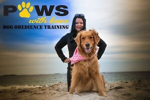 Basic Obedience Group Dog Training Classes
