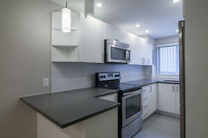 Downtown - Fully Renovated 2 bed apartment - Centre-ville 4 1/2