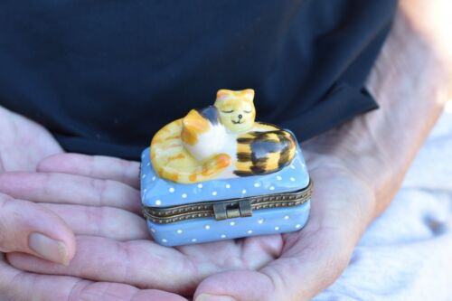 Hinged Lid Trinket/Pill BoxTabby Cat Topper2 kittens