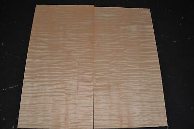 Pair Of Curly Maple Raw Wood Veneer Sheets 8.5 X 17 Inches 142nd  4706-47