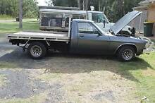 1982 WB one- tonner Holden Ute Pindimar Great Lakes Area Preview