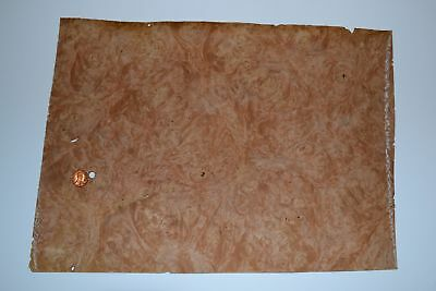 Chestnut Burl Raw Wood Veneer Sheets 10 X 15 Inches 142nd Thick  E7318-32