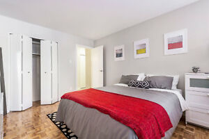 Bright 1 Bedroom | Stainless Steel Appliances, Onsite Laundry!