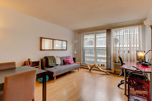 Terrasses Windsor - 1 bdrm - Dowtown MTL