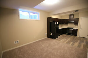 Brand NEW lower-level suite: South Edmonton, 5491 Allbright Sq