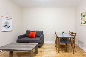 Amazingly Located Furnished 1 Bedroom