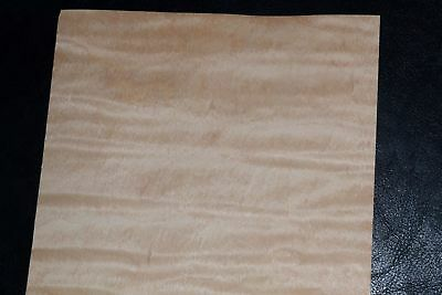 Curly Maple Raw Wood Veneer Sheets 6 X 33 Inches 142nd   8632-40