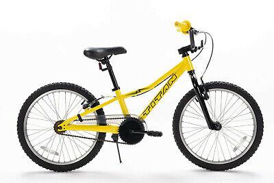 "Titan Bicycles Lightning 20"" Hyrbrid BMX Bike"