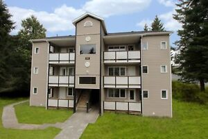 2 Bedroom Apartment on Drake Cres.