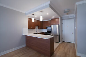 Renovated Downtown 1 bed with washer/dryer- 3 1/2 - McGill