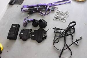 Assorted Horse Gear For Sale Ipswich Ipswich City Preview