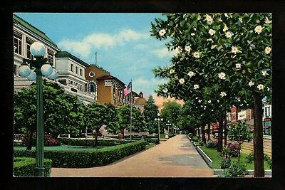 Arkansas AR postcard Hot Springs National Park Bath House Row Magnolia chrome