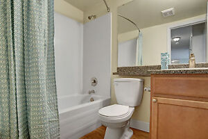 Gorgeous Top Floor One Bedroom Apartment! Must See!