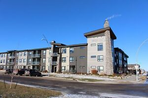Evergreen - Furnished 2 Bedroom Condo! Amazing Unit!