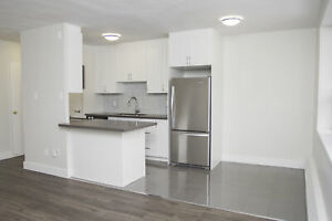 Renovated Bachelor near The Danforth! (Burnhill Rd/Warden Ave)