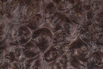 Walnut Burl Raw Wood Veneer Sheet 12 X 14 Inches Wheres Pluggo E7318-27