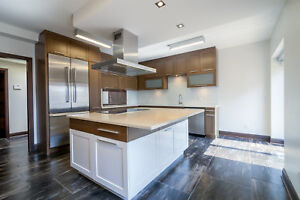 Luxury Renovated Downtown Penthouse - 3 Bed 2.5 Bath - Terrace