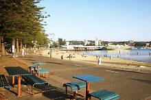 Sunny room available in great flat close to Manly CBD Manly Manly Area Preview