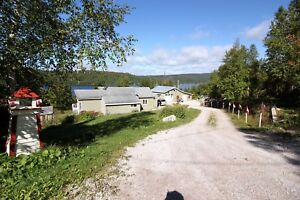 124 New Road - Bonne Bay Pond