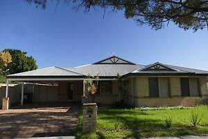 1.5 rooms in a large house close to everything!! Bassendean Bassendean Area Preview