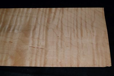Curly Maple Raw Wood Veneer Sheets 6 X 51 Inches 142nd 8632-46