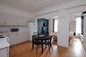 Modern furnished 4 bedroom apartments - 6 1/2 near Concordia