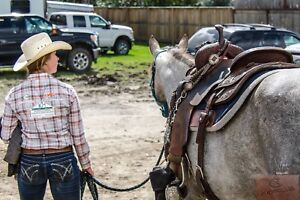 Need help buying or selling your horse?