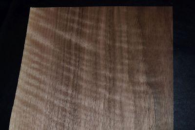 Walnut Raw Wood Veneer Sheets 8.5 X 46 Inches 142nd   E6925-19