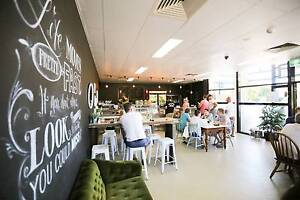 Cafe for sale in busy and local loyal shopping strip Mudgeeraba Gold Coast South Preview