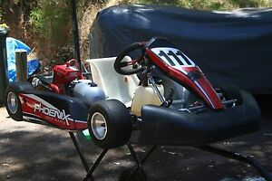 Phoenix Go Kart with Stand  (Go-Kart) Roleystone Armadale Area Preview