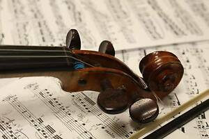 Violin Teacher Fairfield Brisbane South West Preview