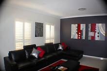 PLANTATION SHUTTERS Sydney Region Preview