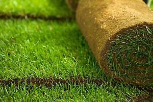 Turf supply and install The Hills District Preview