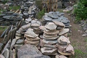 Landscaping Stone(50% Off)
