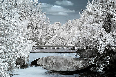 Sony A6000 715nm Standard IR Infrared converted (Sony Infrared Camera)