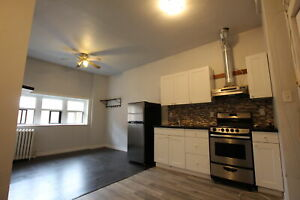 Clean & Newly-Renovated 1 Bedroom Apartment for Rent