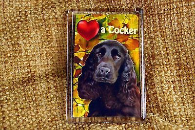 Cocker Spaniel Black Dog Gift Dog Fridge Magnet 77x51mm Xmas stocking filler