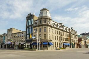 DOWNTOWN GUELPH - Ideal for the Professional!