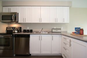 Newly Renovated 2 BR close to the University of Waterloo