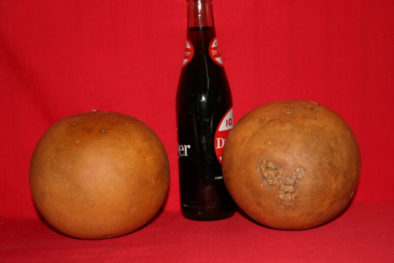 GOURDS 3 CANNON BALL GOURDS ( DRIED AND CLEANED)