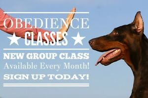 Beginner Canine Obedience Courses 2018