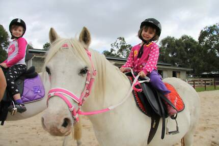 Learn to ride @ perth horse riding centre Brookdale Armadale Area Preview
