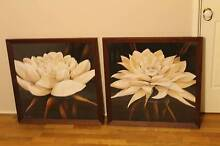 2 framed flower paintings from Rian Withaar Charm and Delight East Maitland Maitland Area Preview