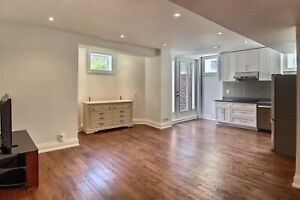 2-Bedroom Basement Apartment (North York)
