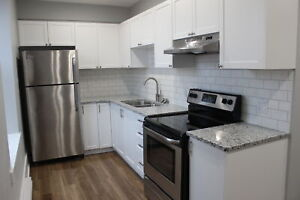 Stunning, Spacious One Bdrm, Downtown Wellington St
