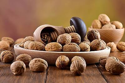 Nutcracker made from natural oak wood - VERY SOLID - mushroom NEW