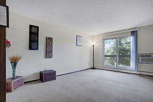 Amazing 1 bedrm with storage/Balcony Avail May  1.(306) 314-0448